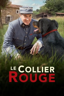 Le Collier rouge streaming