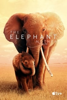The Elephant Mother streaming
